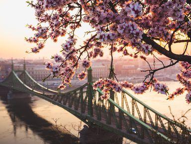 Колесо обозрения— Будапешт за2часа