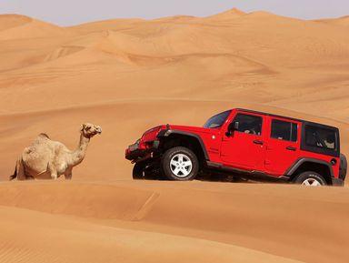 Пустынное сафари— джип-тур вДубае