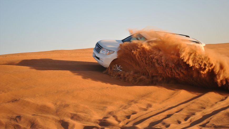 Сафари по Аравийской пустыне